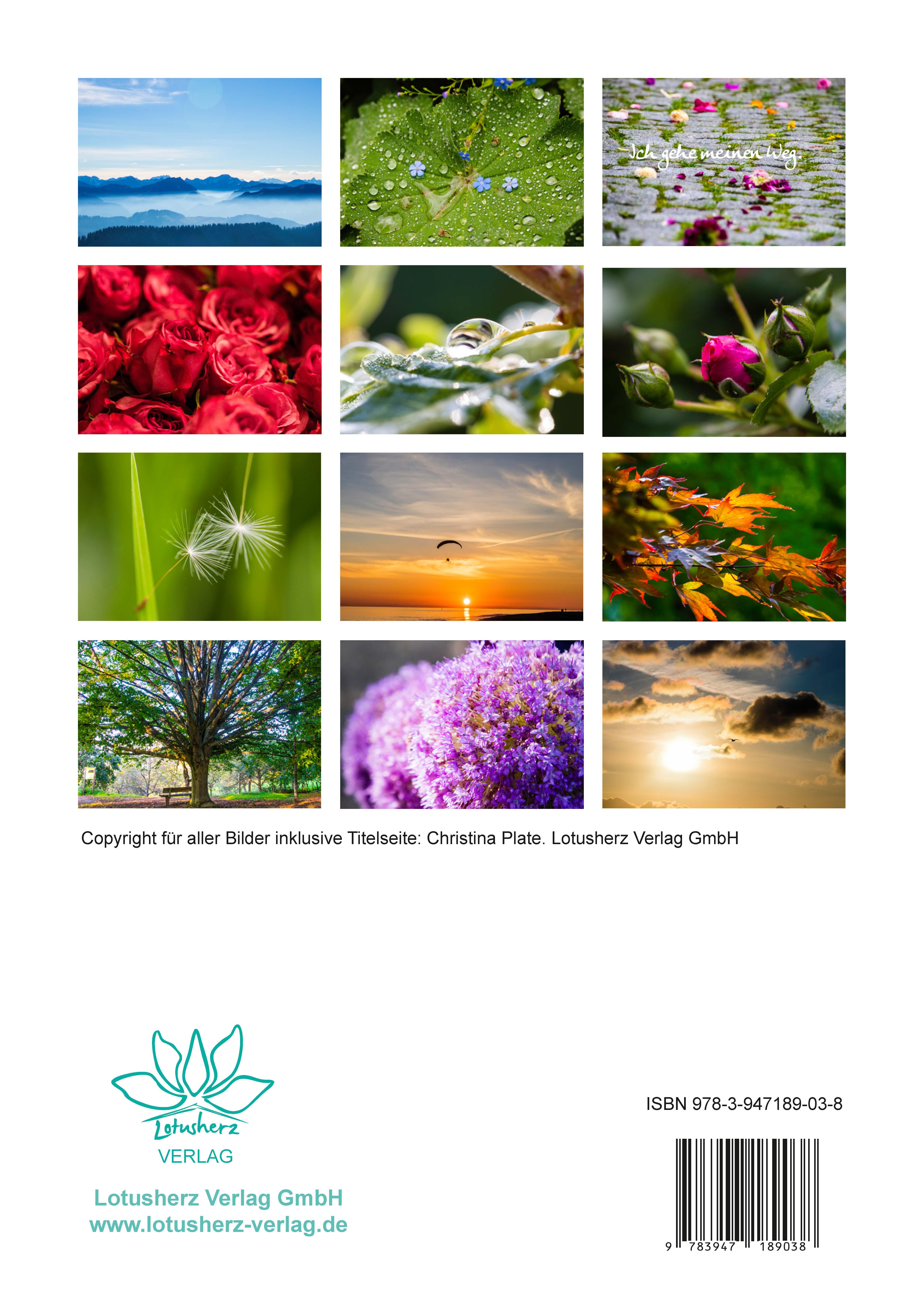 Seelenzeit-Kalender Übersicht über die Monatsbilder